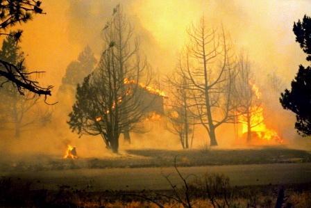 The Skeleton Fire Bend Oregon c. 1996
